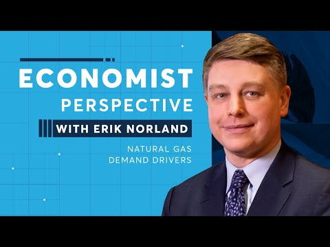Economist Perspective: Natural Gas Demand Drivers