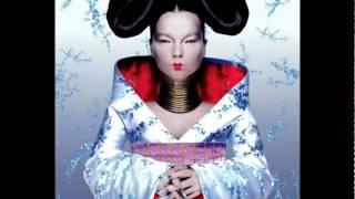 Björk - Unravel - Homogenic