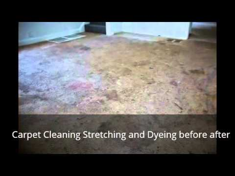 Carpet cleaning stretching and dyeing in Indianapolis Before and after