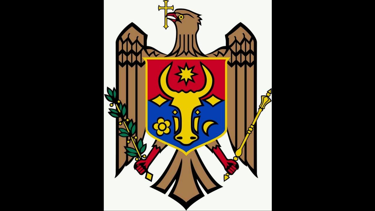 Гербы золотого кольца россии в одной картинке новых версиях