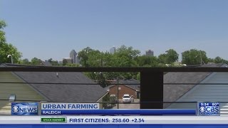 Raleigh making a name for itself with urban farming