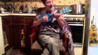 Drilling a Home on Uke, cover of George Harrison
