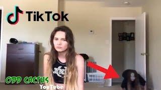 五個恐怖的抖音Tik Tok影片