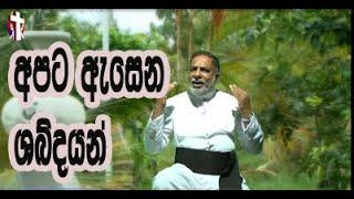 අපට ඇසෙන ශබ්දයන් Catholic Sinhala Preaching Thought For The Day   10th   July   2020