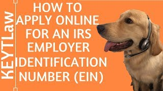 How to Apply Online for an Employer Identification Number (EIN) (2019)
