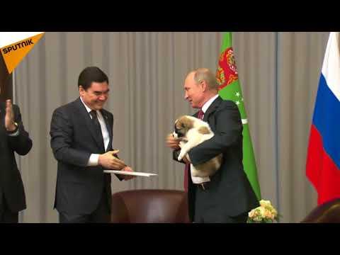 Le président russe a reçu un cadeau qui aboie