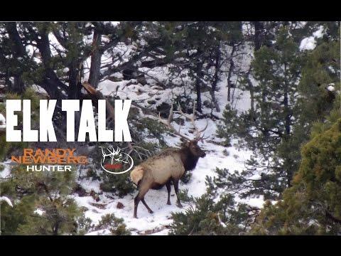(DIY Hunting) ELK TALK - Randy Newberg's