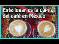 Video de Coatepec