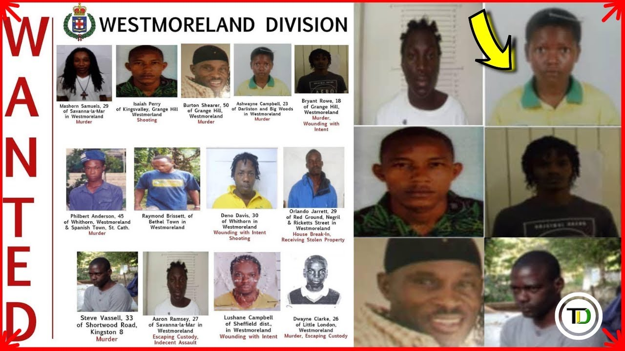 Westmoreland MOST WANTED Men - fiwibusiness in Jamaica
