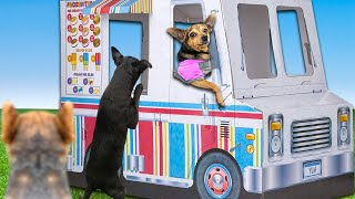 We Built a Miniature Ice Cream Truck For Our Dog in our Backyard! PawZam Dogs