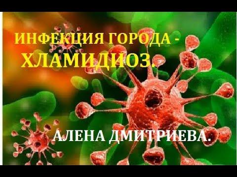 Инфекция города - хламидиоз.  Алена Дмитриева.