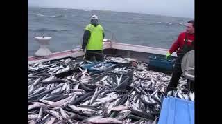 Top 10 Amazing Viral Videos 2017 Fishing Boats, Salmon Traditional Net Fishing T