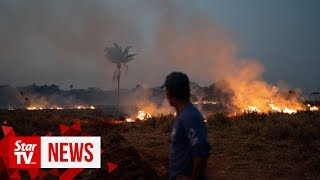 brazil-send-troops-fight-amazon-fires-president