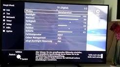 Panasonic TX-50ASW504 Einstellungen/Setup