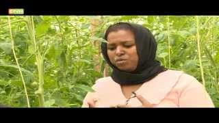 Jamila Abbass Success Story - Founder M-Farm