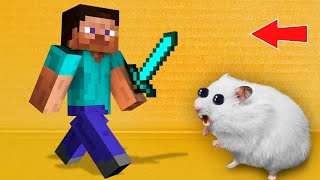MINECRAFT - Hamster Maze with Traps ☠️ [OBSTACLE COURSE]