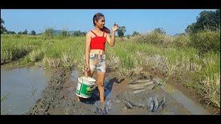 美しい女の子によるすばらしい釣り - カンボジアの伝統的な釣り - どのように釣りの部分148 thumbnail