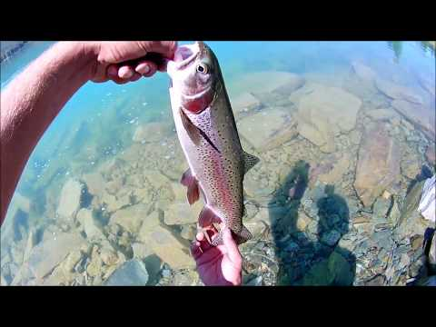 Fishing Foy Lake In Kalispell Montana