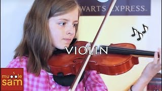 Violin (Musical Instrument)