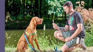 Przysmaki treningowe dla psa – TRENING – John Dog