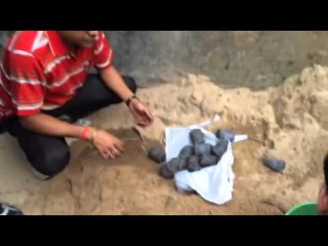 West Bengal elections 2016: Crude bombs recovered in Kolkata's Chetla