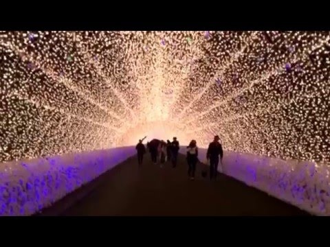 Millions of lights tunnel in Nabana No Sato  - Nagoya, Japan