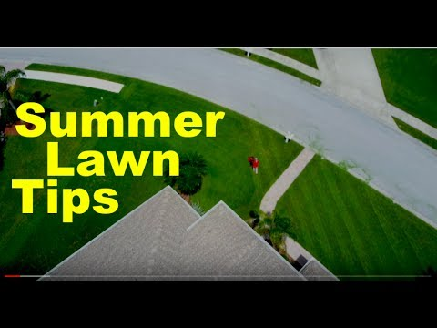 Summer Lawn Care Tips - North and South