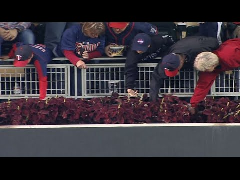 Fans search for Jim Thome's 607th home run ball at Target Field