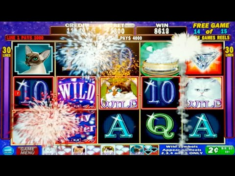 Kitty Glitter Bonus Max Bet - Slot Machine Bonus Round! - 동영상