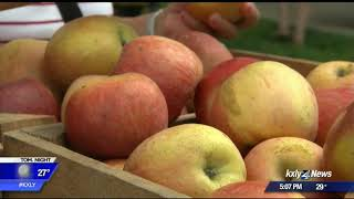 Idaho leaders back at odds over grocery tax
