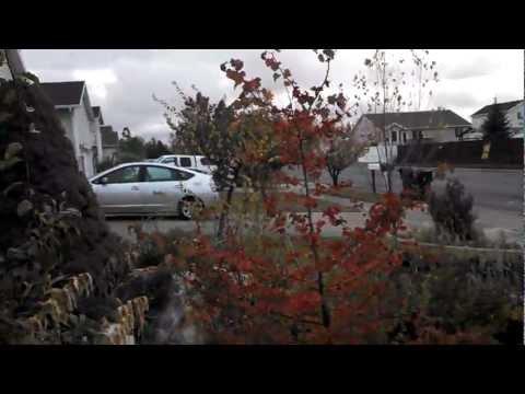 Motorola Droid RAZR HD 1080P Video Demo