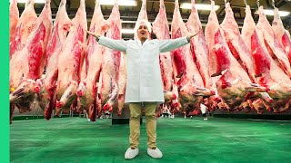 Japanese Kobe Beef Factory!!! MOST EXPENSIVE Meat in the World!!!