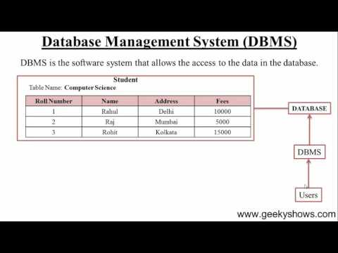 3. What is DBMS (Hindi) - 동영상