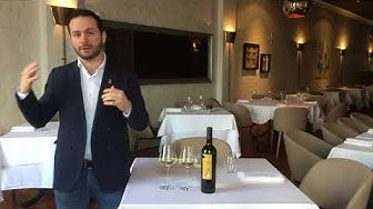 Andrea Martinisi, Beverage Director (NZ) présente Chasselas Vin d'oeuvre / SWISS SOMM CHALLENGE 2019
