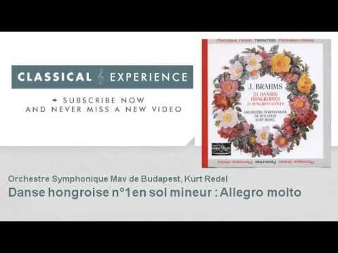 Johannes Brahms : Danse hongroise n°1 en sol mineur : Allegro molto
