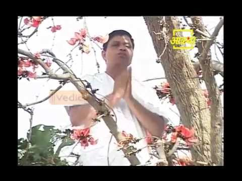 Ayurvedic use Flame Of The Forest (Palas) Part 02