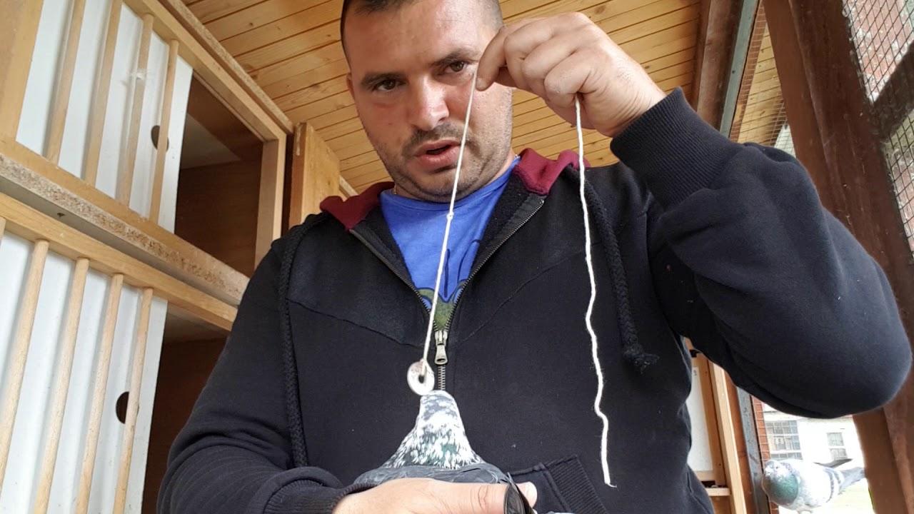Ortoped Gabriel Stefanescu: Artrita si artroza nu sunt acelasi lucru!