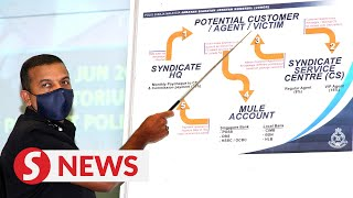 Johor cops bust bogus online job syndicate