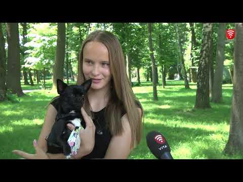 Телеканал ВІТА: Кліщі атакують, новини 2019-06-14