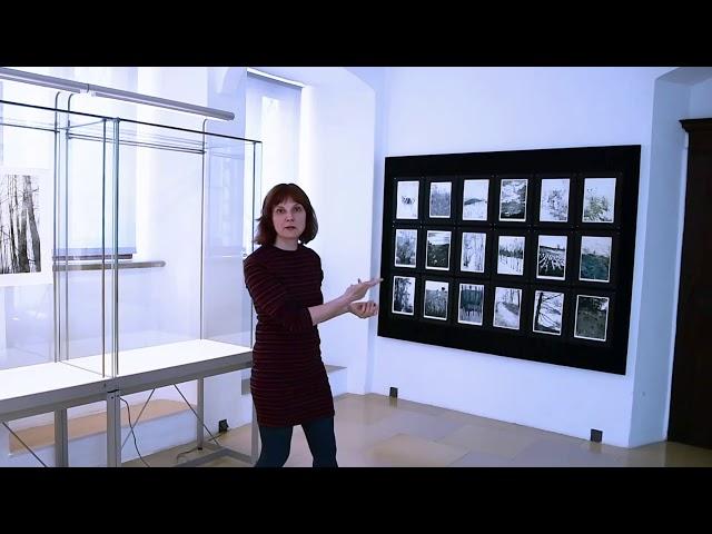 3 Minuten: GrasBaumWindWasser - Susanne Pohl