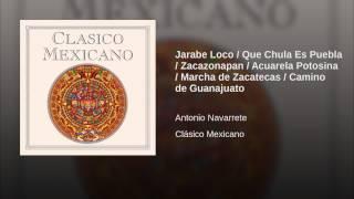 Jarabe Loco / Que Chula Es Puebla / Zacazonapan / Acuarela Potosina / Marcha de Zacatecas /...