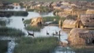 جويسم كاظم و كريري طرب عراقي قديم  من قلب اهوار العراق