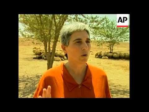 Fogotten Bedouin Women Set Up Small Businesses