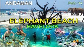 Elephant Beach, Havelock Island, Andaman / Water Activities Beach at Havelock