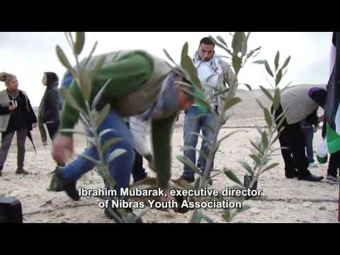 PNN Report on OVP's Activity in Bethlehem