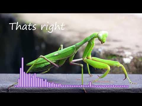 dj remix 2018 terbaru remix indonesia 2018 house musik 2018 mp3 download