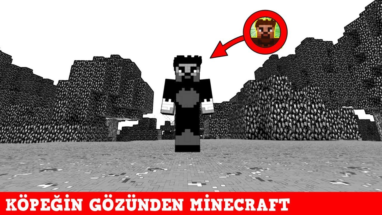 ZENGİN VS FAKİR #142 - Köpek 'in Gözünden Minecraft