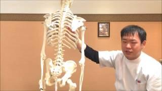 「夏かぜ」になりやす原因 | 整骨院 東大阪市永和 thumbnail