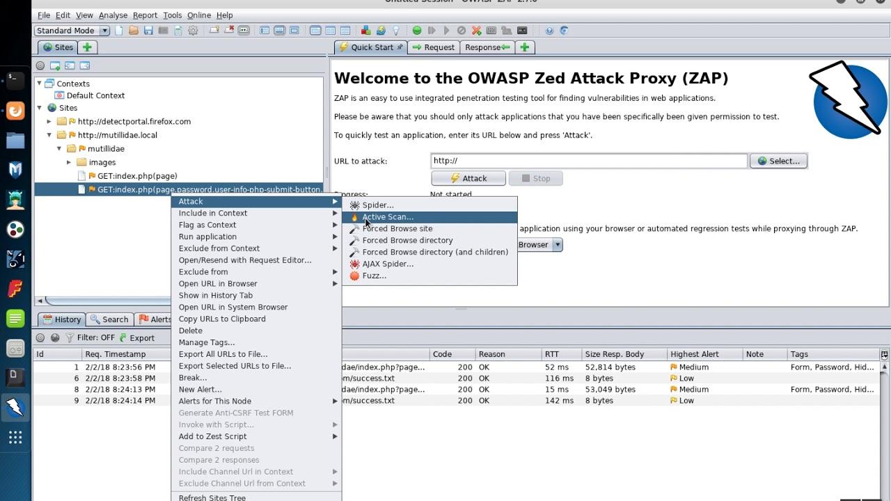 OWASP ZAP: Web App Vulnerability Assessment (Single Page)