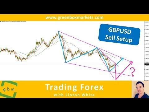 Forex trading white collar